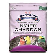 Graines de chardon pour oiseaux Bird Watchers Blend