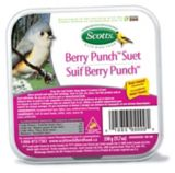 Scotts Berry Punch Suet Bird Snack, 330-g | Scotts