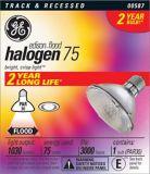 Ampoule projecteur halogène GE 75 W PAR30 | GE | Canadian Tire