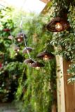 CANVAS Rustic Outdoor String Lights | Canvas