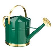 Metal Watering Can, 9-L
