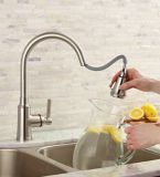 Cuisinart Calaid Pull-Down Kitchen Faucet, Brushed Nickel | Cuisinart