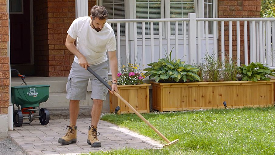 How To Fertilize Your Lawn Canadian Tire
