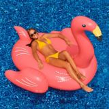 Giant Inflatable Ride-On Pool Flamingo | Blue Wave | Canadian Tire