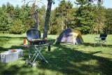 Napoleon Travel Q Scissor Cart Grill | Napoleon | Canadian Tire