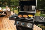 Napoleon LD3 3-Burner Natural Gas Grill | Napoleon | Canadian Tire