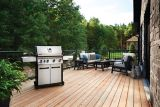 Napoleon LD4X 4-Burner Natural Gas Grill | Napoleon | Canadian Tire