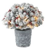 NOMA Pre-Lit Wreath and Topiary Potted Tree, 2-pc | NOMA
