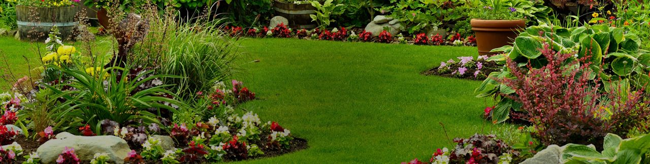 Landscaping canadian tire - Landscaping fotos ...
