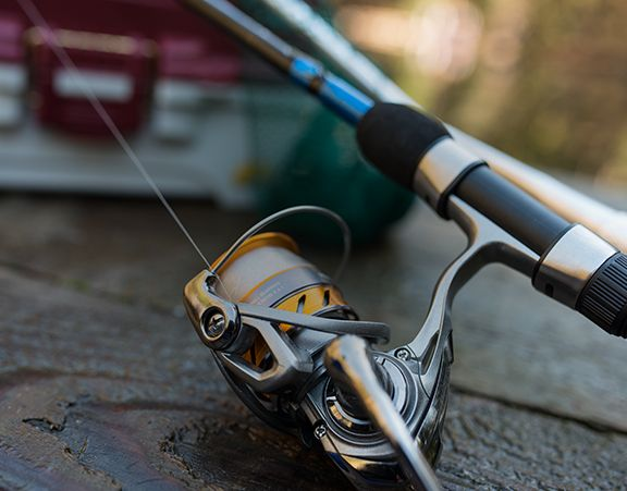 Pick the right rods and reels.