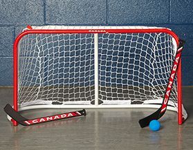Mini Hockey Sticks & Nets