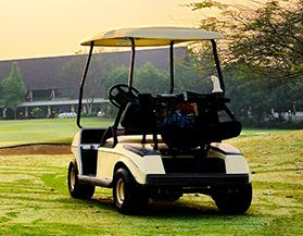 Shop All Golf Cart Batteries
