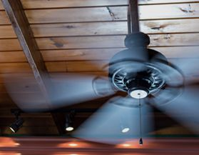 Shop LED Bulbs for Ceiling Fans