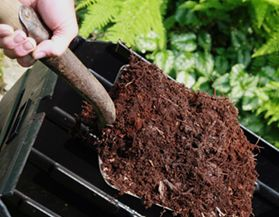 Composting & Recycling