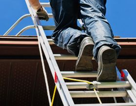 View All Ladders & Scaffolding