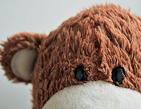 Browse our selection of stuffed and plush animals.