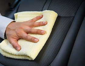 Upholstery, Leather Care & Interior Protectants