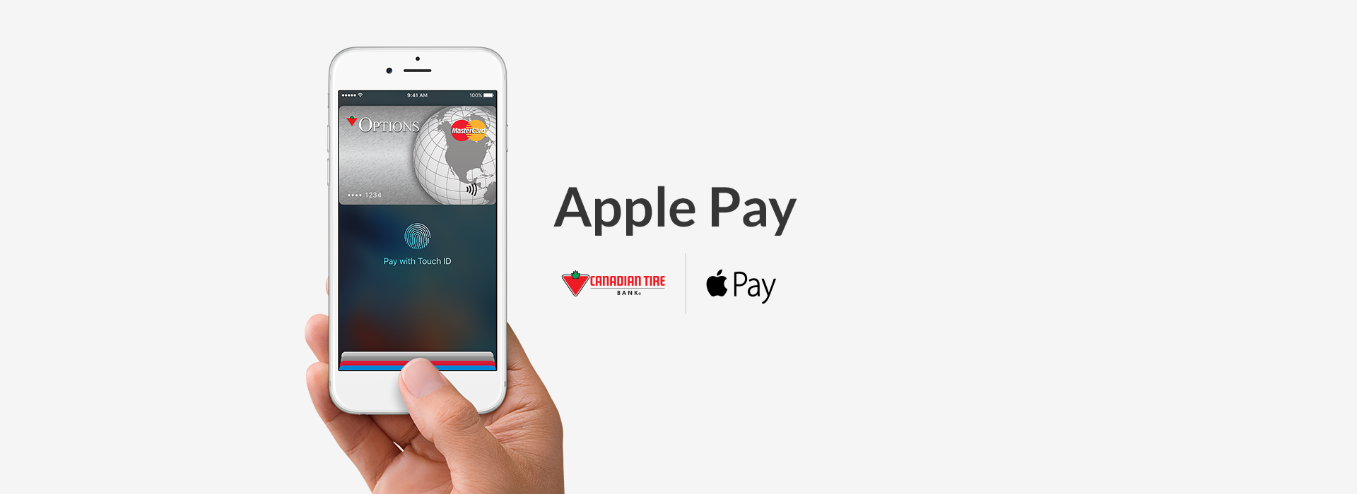 Apple pay infographic