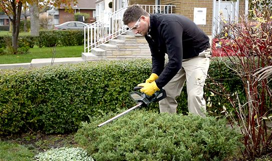 Check out our cordless hedge trimmers