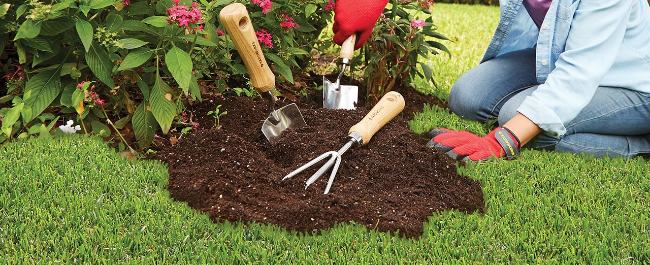 Beginner gardening tips edging design ideas basic for Gardening tools beginners