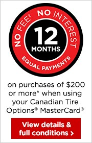 12 months* no fee, no interest financing on purchases of $200 or more.