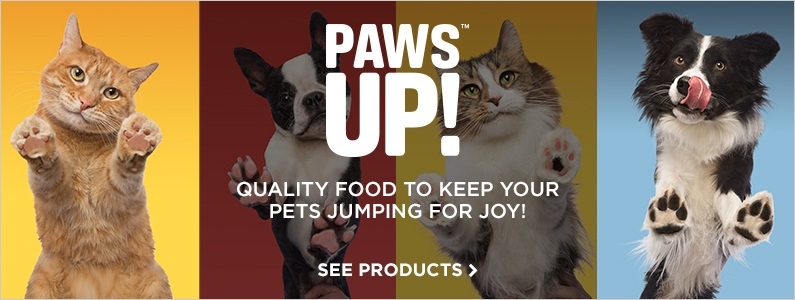 Introducing Paws Up!