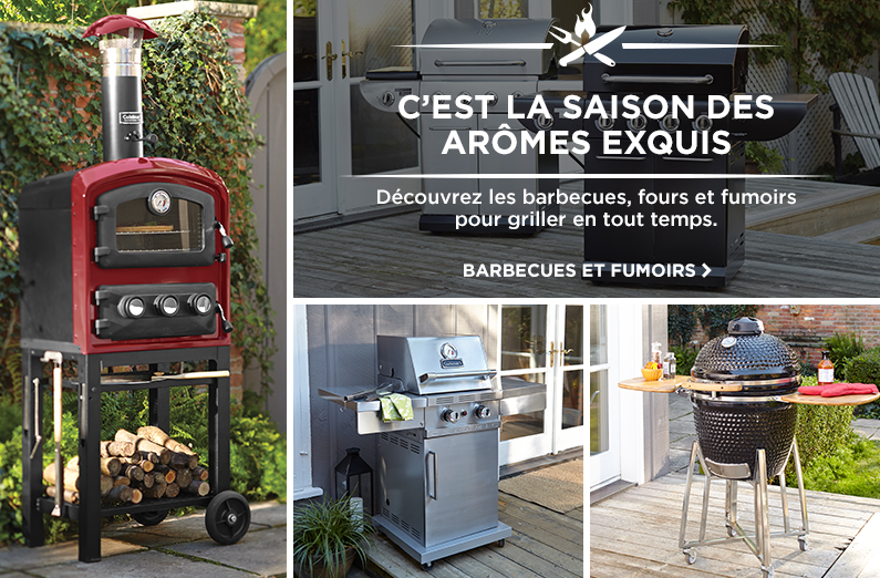 Barbecues fumoirs et accessoires canadian tire for Balancoire exterieur canadian tire