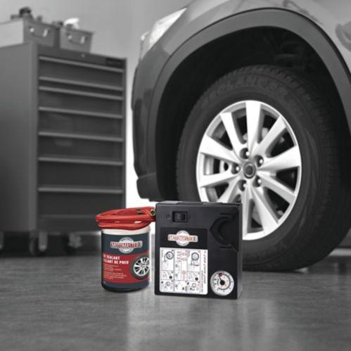 MotoMaster Inflator & Tire Repair Kit