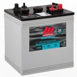 MotoMaster Eliminator Ultra GC2 6-Volt AGM Deep Cycle Battery | MotoMaster Eliminatornull