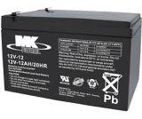12-Volt 12AH SLA Battery | PBS | Canadian Tire