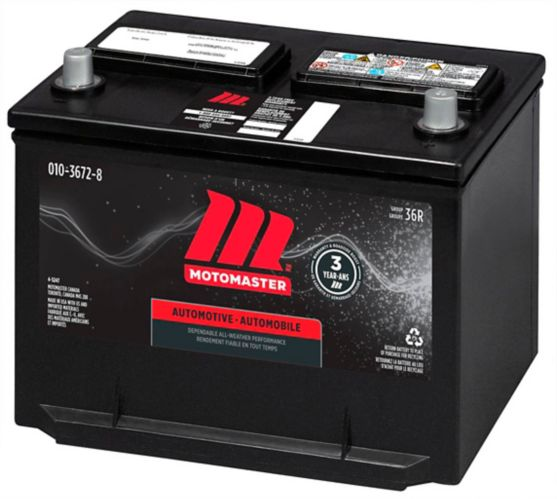MOTOMASTER Group Size 36R Battery, 650 CCA