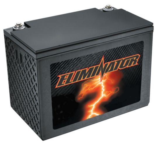 Batterie à décharge poussée Motomaster Eliminator, énergie renouvelable, 12 V