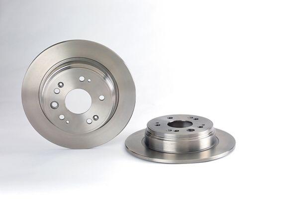 Brembo Brake Rotor, Rear