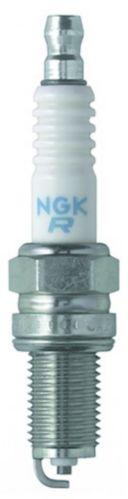 NGK Year Round Spark Plug, 1-pk