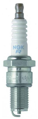 NGK Fall/Winter Spark Plug, 2-pk