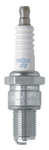 NGK Fall/Winter Spark Plug, 1-pk