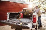 DEWALT Low Profile Truck Box, Black | DEWALT | Canadian Tire