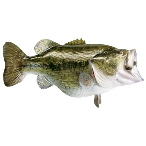 Wide Mouth Bass Car Magnet