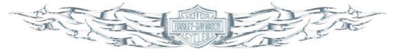 Harley-Davidson Windshield Sunscreenz Product image