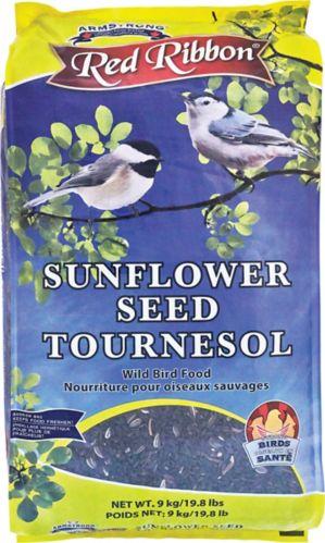 Red Ribbon Sunflower Wild Bird Food