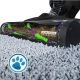 Hoover® ONEPWR Evolve Pet Upright Vacuum | Hoovernull