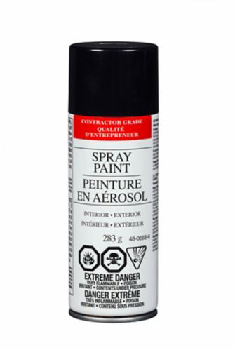 Value Brand Enamel Gloss Spray Paint, 285 g Product image