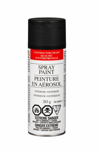 Value Brand Enamel Flat Spray Paint, 285 g Product image