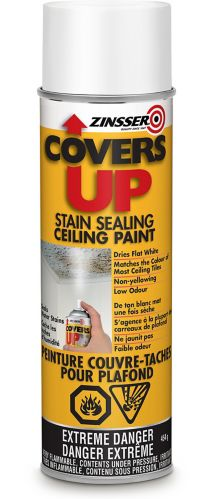 Zinsser Covers-Up Ceiling Paint, 454-g Product image