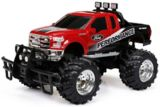 RC Wheelie 1:14 Scale Race Truck