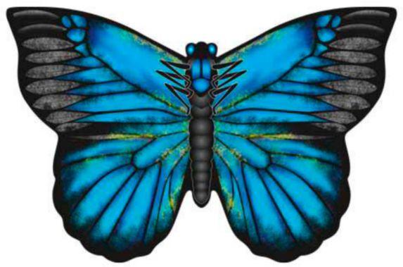 Cerfs-volants papillons X-Kites, variés Image de l'article