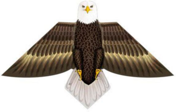 X-Kites Birds of a Feather Kites, Assorted Product image