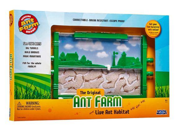 Uncle Wilton Ant Farm Live Ant Habitat