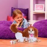 Puppy Surprise Plush, Assorted | Puppy Surprisenull