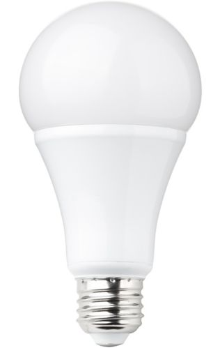 NOMA LED A19 60W Dimmable Daylight Bulb, 3-pk